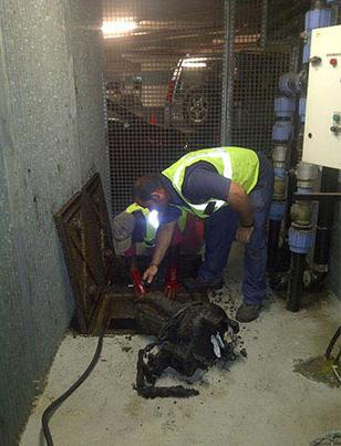 Pump Repairs And Replacement